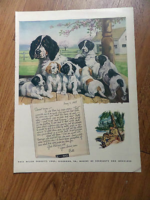 1944 Sergeant's Dog Food Ad Cocker Spaniel Pups Dogs