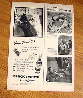 1951 Black White Scottish Scotty Terrier Westie Ad