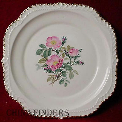 HARKER china WILD ROSE gadroon SQUARE SALAD PLATE