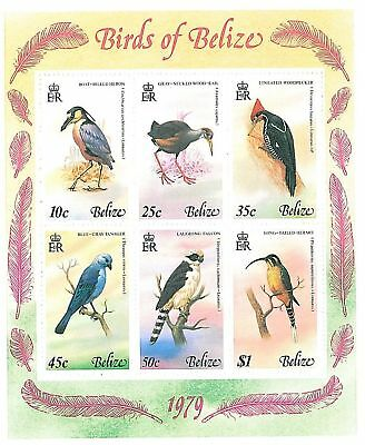 Stamps - Belize 1979 - Birds