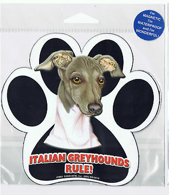 Italian Greyhound Waterproof Bumper Sticker Magnet NIP