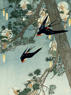 Vintage Asian POSTER.Stylish Graphic.Oriental Birds.Interior Room art Decor.662