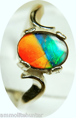 Canada Ammolite Jewelry Ring.Gorgeous Quality Tricolour