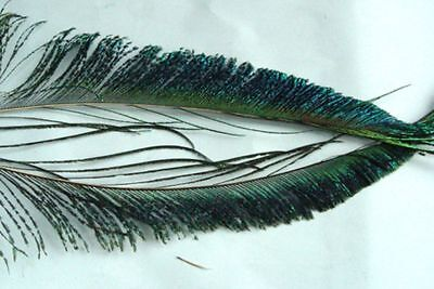 7e089f22a6e4f 1 X PAIRE AILE PIE plume montage mouche truite wing magpie fly tying ...