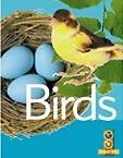 BIRDS Go Facts rrp$22 BNew kids animals science nature photos teachers resources
