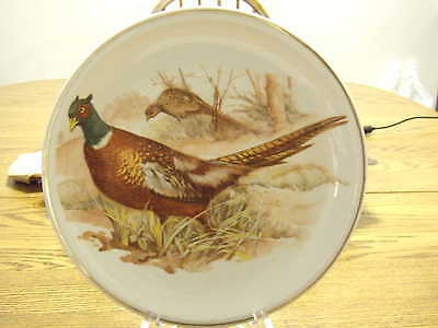 Porcelain Portrait Picture Pheasant Game Bird Cabinet Wall Plate 10""