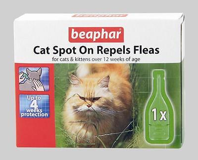 Beaphar Flea 4 Week Drops Spot On Treatment for Cats Kittens Killing Fleas