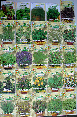 Herb Seeds 28 VARIETIES TO CHOOSE FROM (Everything you need is here) Top Quality
