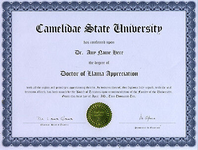Doctor Llama Appreciation Novelty Diploma Gag Gift Wool