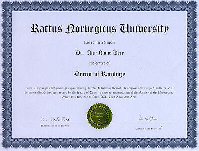 Doctor Ratology Novelty Diploma Gag Gift white Rat Rats