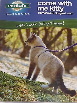 Come with me Kitty  Cat Harness and Bungee lead.