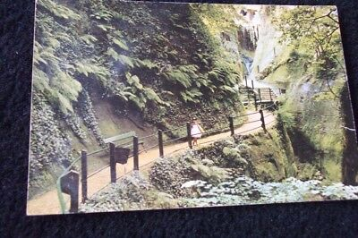 Old Postcard Of The Chine, Shanklin Isle Of Wight