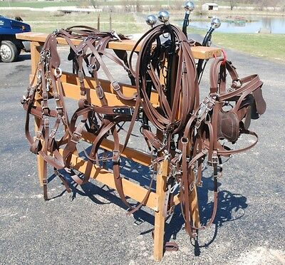 Amish made team BROWN BETA harness brand new for mules, horses, haflingers