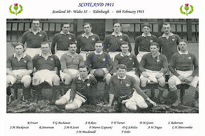 SCOTLAND 1911 (v Wales, 4th February) RUGBY TEAM PHOTOGRAPH