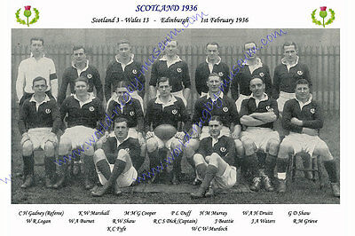 "SCOTLAND 1936 (v Wales) 12"" x 8"" RUGBY TEAM PHOTO PLAYERS NAMED"