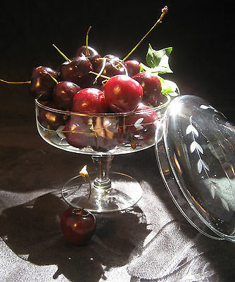 VINTAGE Clear Crystal/Glass Etched Footed Candy or Fruit Compote With Lid