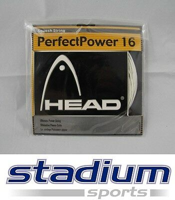 Head Squash String - PerfectPower 16 - Ultimate Power String