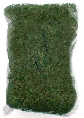 Natural Dried Moss 100g, Artifical Plant Decoration Accessory, Planter Topping