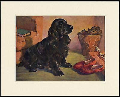 COCKER SPANIEL YORKSHIRE TERRIER BY FIRE LOVELY DOG PRINT MOUNTED READY TO FRAME