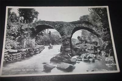 Old Postcard Of Shooting The Rapids, Killarney  - Free Uk Postage