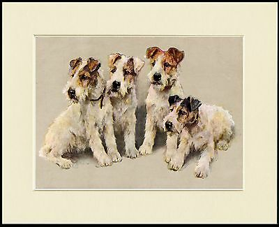 Wire Fox Terrier Group Of Dogs Lovely Dog Print Mounted Ready To Frame