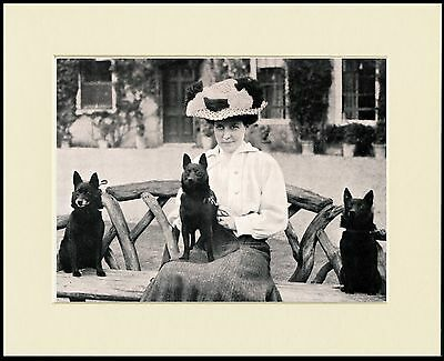 Schipperke Edwardian Lady And Her Dogs Lovely Dog Print Mounted Ready To Frame