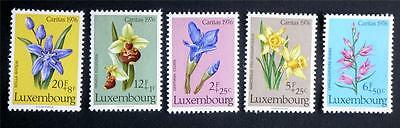 100 X  Luxembourg  All Different Mint Stamps Including Commemorative Issues