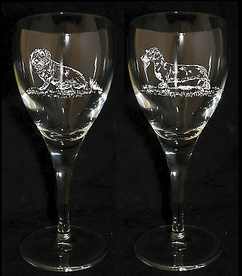 WIRE HAIRED DACHSHUND Boxed PAIR WINE GLASS *DOG GIFT*