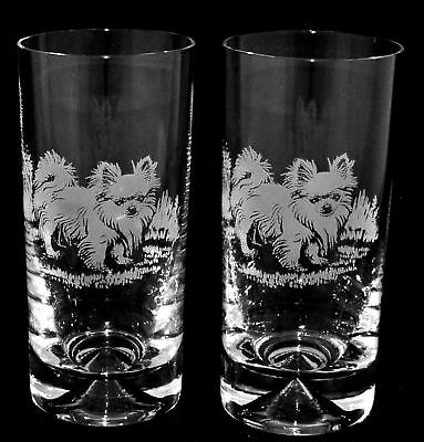 LONG HAIRED CHIHUAHUA *DOG GIFT*  Boxed PAIR GLASS HIGHBALL