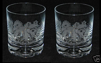 LONG HAIRED CHIHUAHUA *DOG GIFT*  Boxed PAIR GLASS WHISKY TUMBLER
