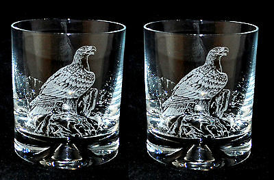 Boxed Pair of Glass Whisky Tumblers EAGLE design *BIRD of PREY FALCONRY GIFT*