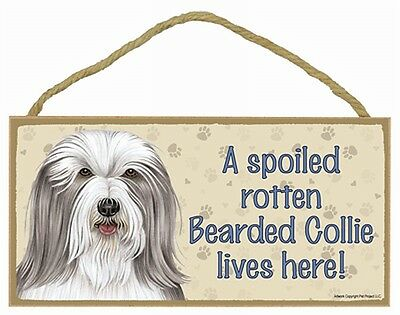 BEARDED COLLIE- A Spoiled Rotten--- Lives Here Wood SIGN/PLAQUE 5 X 10