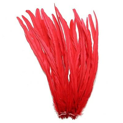"""25 pcs 16-18"""" long Bright Red Dyed Rooster COQUE tail Feathers for crafting"""