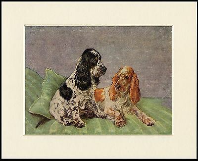 COCKER SPANIEL DOGS GUARDING MASTERS BINOCULARS DOG PRINT MOUNTED READY TO FRAME