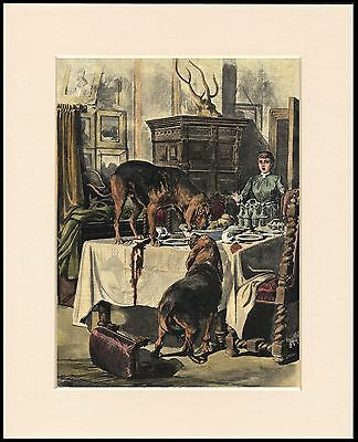 Bloodhound Naughty Dogs On Table Dog Print Mounted Ready To Frame