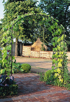 Monet Garden Arch by Agriframes - 4' classic arch trellis