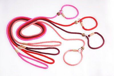 Alvalley Nylon Slip Lead with Stop for Dogs 6mm X 4ft Basic Colors