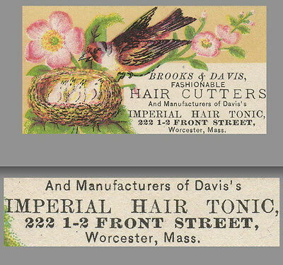 1800's Brooks & Davis Imperial Hair Tonic Worcester MA Advertising Trade Card