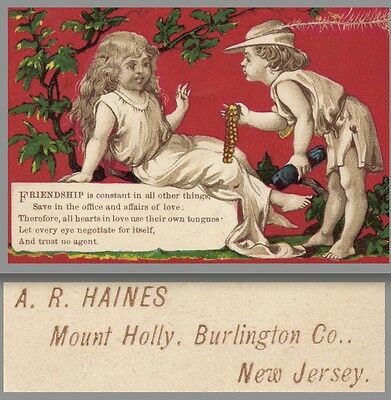 Dr Jaynes Expectorant Cough Cold Cure A.R Haines Drug Mount Holly NJ Trade Card
