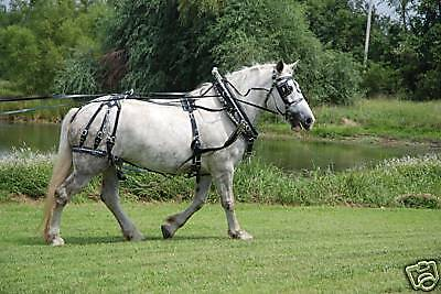Amish made biothane - beta  horse parade harness complete