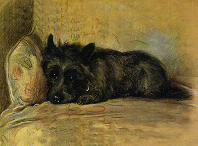 Scottish Terrier Charming Scottie In Chair Dog Greetings Note Card