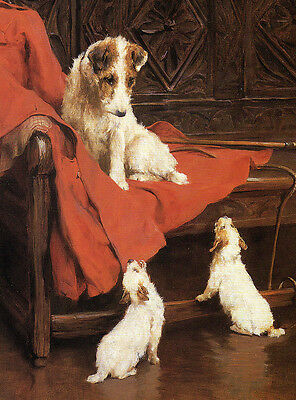 Wire Fox Terrier Charming Dog Greetings Note Card Mum In Chair With Two Pups
