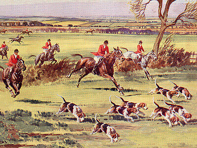 Foxhound Lovely Dog Greetings Note Card, Horses And Hounds