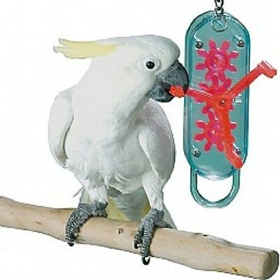 Cog winder - large or small, bird / parrot acrylic activity toy