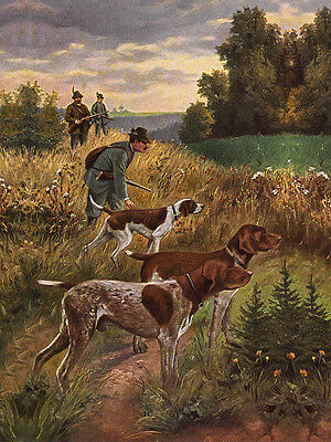 German Shorthaired Pointer Dog Greetings Note Card Dogs With Men And Guns