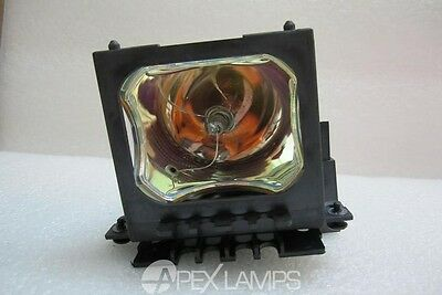 Projector Lamp for TOSHIBA TLPLX45 OEM BULB with New Housing 180 Day Warranty