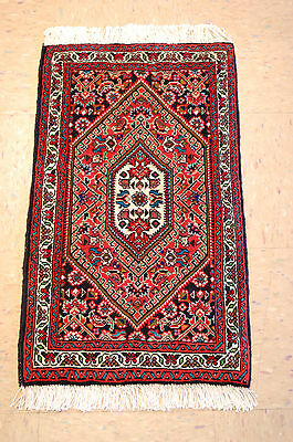 c1930s ANTIQUE FINE PERSIAN BIJAR RUG 1.5x2.6 HIGHLY DETAILED RARE SIZE BEAUTY
