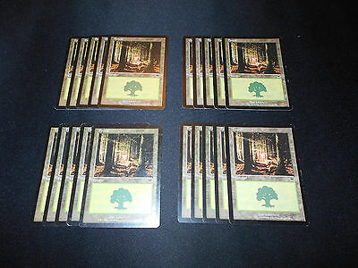 20x Basic Land*SAME ART*Forest*Onslaught*#349**Magic the Gathering MTG*FTG
