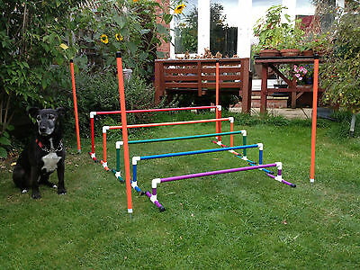 Dog Agility Colourful 5 piece Long Jump by Jessejump Agility
