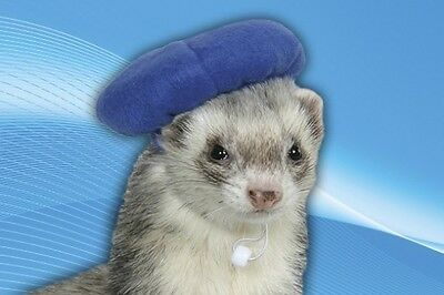 Marshall Ferret Hat Beret